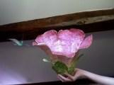 fleur papier de soie , en forme