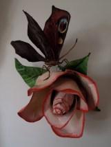 paon du jour 1 rose