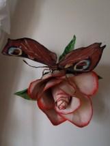 paon du jour 1 et rose