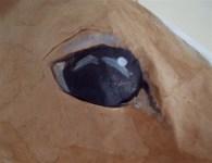 cheval en papier maché