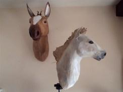 têtes chevaux papier maché
