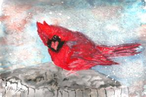 Christmas Cardinal - Watercolour