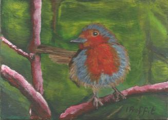 Pink Forest Robin - Acrylic