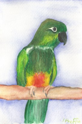 Patagonian - Watercolours