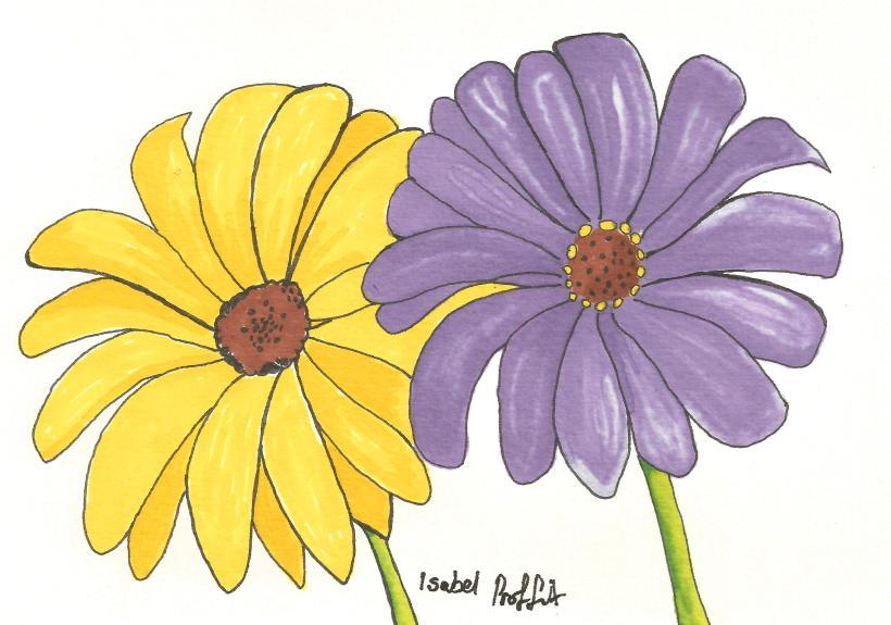 flowers promarkers.jpg