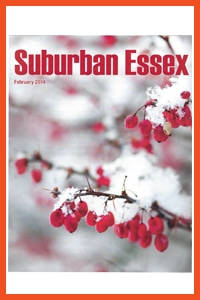 Suburban essex 2014 cover - Press