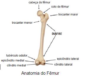 dor no nervo cutâneo femoral medial