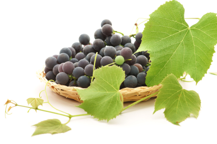 https://i1.wp.com/isagenixhealth.net/wp-content/uploads/2012/04/grapes.jpg