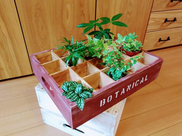 木箱アレンジ例