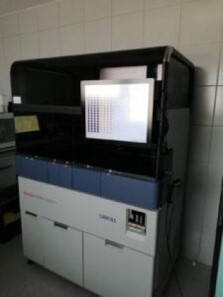 PCR-Covid-19