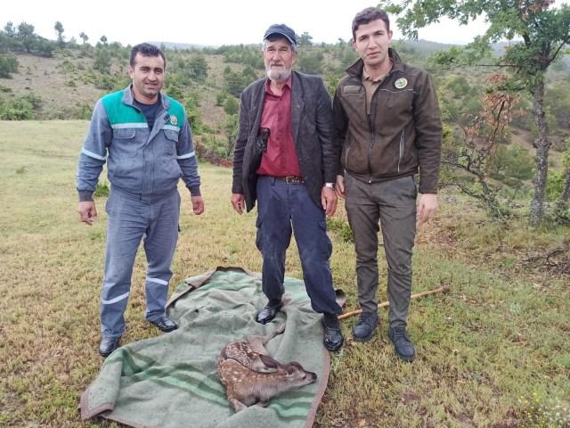 Yaralı bulduğu geyik yavrusunu sırtında 5 kilometre taşıdı