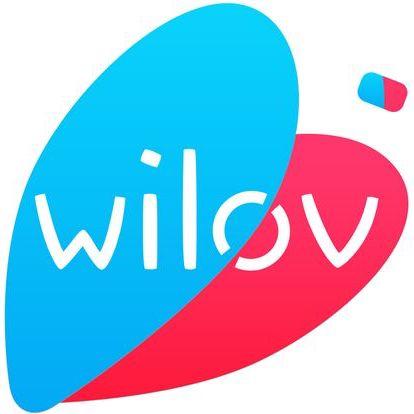 Test de l'assurance Wilov