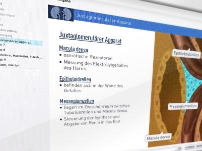 """Medizinisches eLearningprogram iSMK """"Harnorgane"""""""