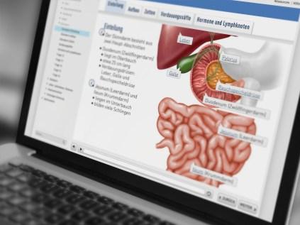ismk-gastrointestinaltrakt-09