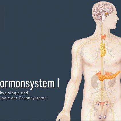 titel-hormonsystem-i