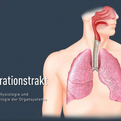 titel-respirationstrakt