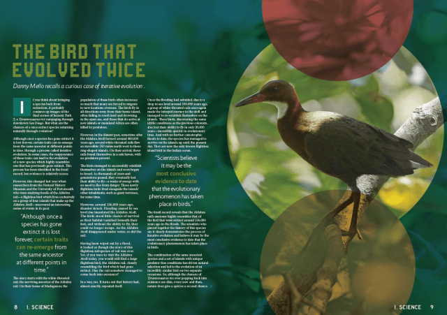 magazine article about birds