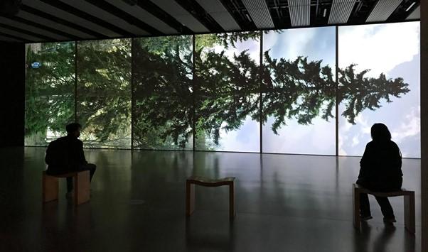 Eija-Liisa Ahtila's Horizontal – Vaakasuora