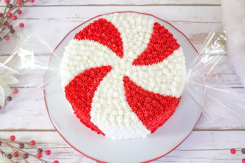 Top View of Giant Peppermint Candy Cake