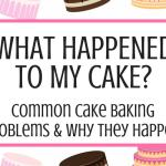 What happened to my cake? Common Cake Baking Problems and Why They Happen