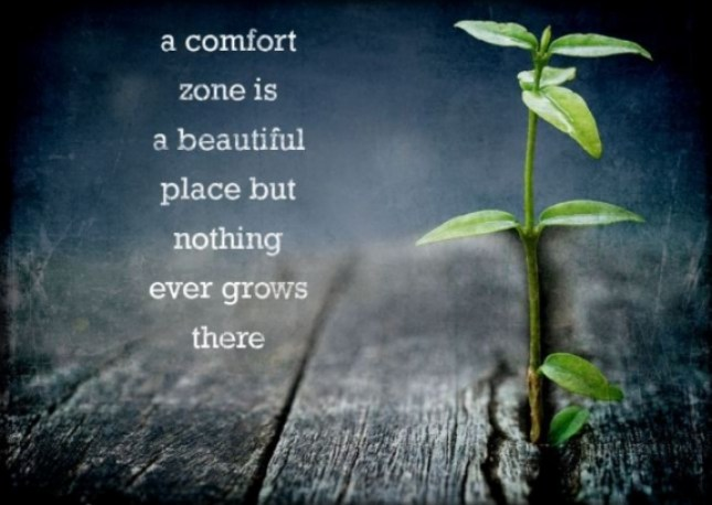 iScriblr_comfort_zone_grow