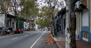 Montevideo leaves on fire