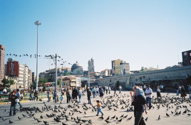 Istanbul pigeons crowded square
