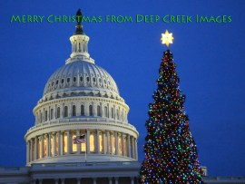 7 Capitol Christmas
