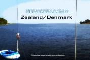 Bramsnæsvig - Isefjordens inderbredning