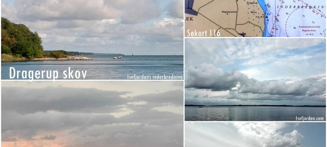 Collage med fotos fra bøje ved Dragerup skov 1/9-2019