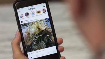 InstaNovels: la nueva forma de compartir libros por Instagram Stories