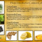 home remedies for the common cold isha sadhguruisha arogya is a holistic health center established in various cities around south india, to produce introduce a new understanding of health in public