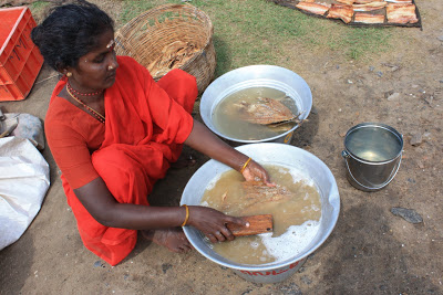 Salted and Dried Fish at Poompuhar