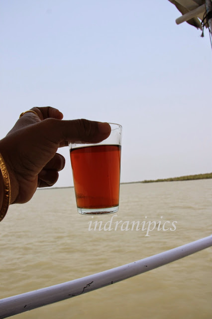 Salty tea in Sunderbans