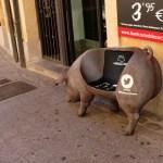 pig wordless