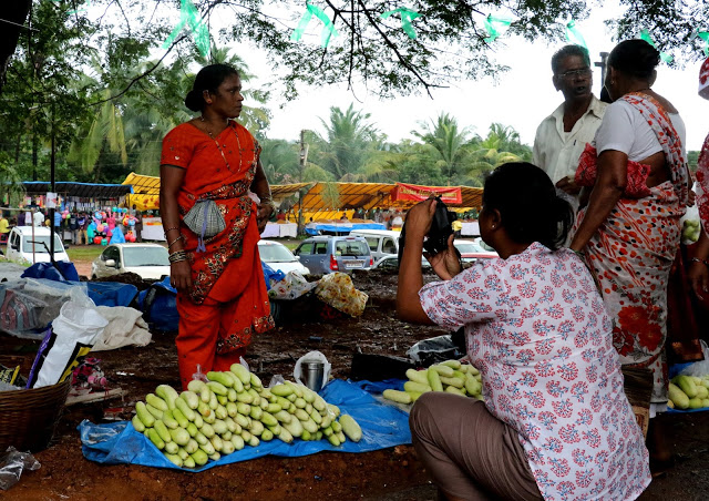 Cucumber sale at Cucumber Festival Goa