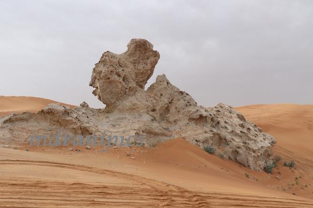 Mleiha Desert Safari Camel Rock