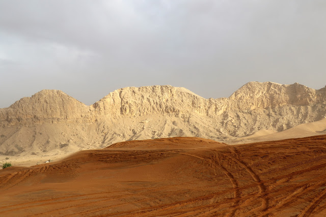 Mleiha Desert Safari