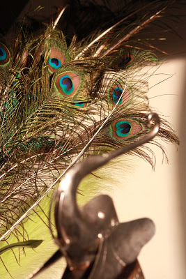 peacock-feather-decoration