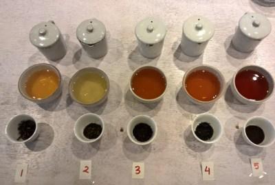 Tea Tasting Samples