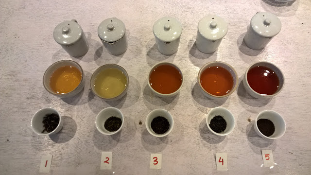 Tea Tasting in Kurseong