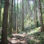 自伐型林業を推進している地球のしごと大学の授業がついにスタート!!!1日目