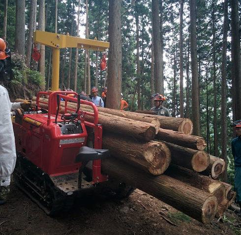 林業研修、搬出編!!!効率よく木を搬出していて感動