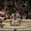 研ナオコが大相撲を見に行くと・・・大相撲よりも天皇陛下よりも研ナオコが気になる