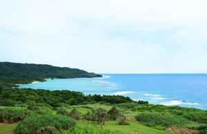 石垣島の自然を堪能!肌で感じたい絶景ポイント