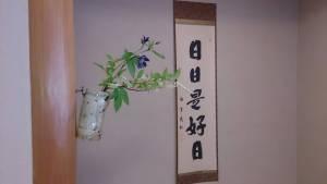 中野区生け花教室