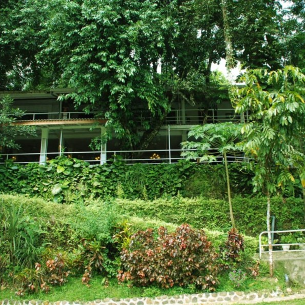 Rafter's Retreat by the banks of Kelani river