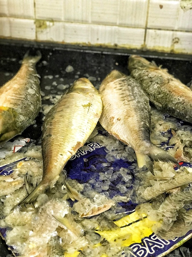 The scraping of scales of Hilsa in Backet Supermarket in Sharjah