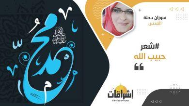 Photo of حبيب الله