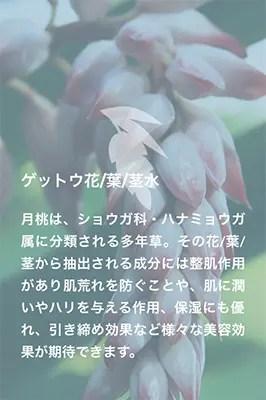 ゲットウ花/葉/茎水